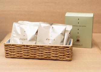 コーヒーノキの苗木プレゼント