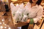 【初級編⑦】最後にコーヒーの木の苗とRinオリジナルブレンド豆のお土産があります