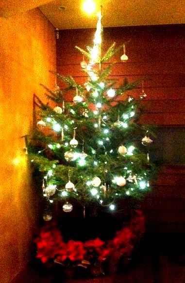 銀座で必見のクリスマスイルミネーションは?