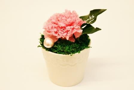 母の日にお菓子とお花のプレゼントはいかがですか?